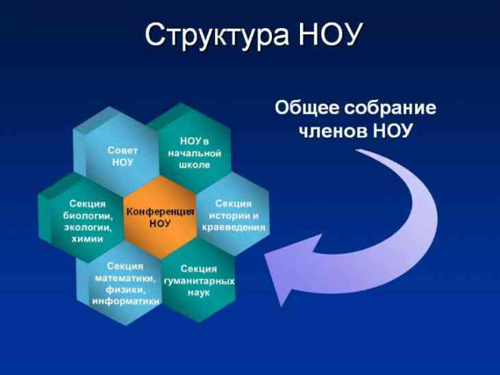 Структура научного общества учащихся «Юный исследователь»